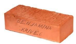 benjamina-krivec