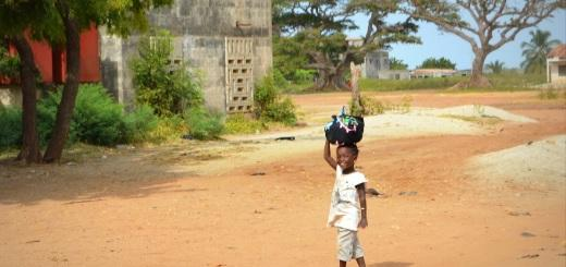 dekice v Afriki