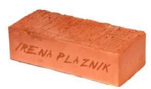 irena-plaznik