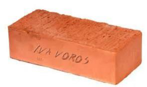 iva-voros